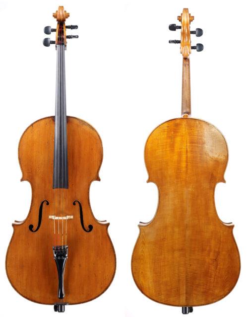 enrico cello